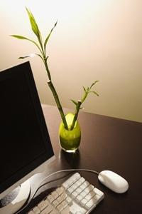 Arbeitszimmer einrichten feng shui  Das Arbeitszimmer nach Feng Shui einrichten und gestalten | Wohnen ...