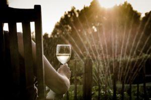 Im Westen lassen sich Sonnenuntergänge im Garten besonders genießen - Himmelsrichtungen