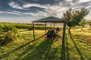 Pavillon im Garten sturmfest machen und vor Sturm schützen - Worauf ist zu achten?