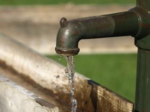 Hohe Temperaturen und anhaltende Trockenheit machen im Juli das Gießen der Pflanzen im Garten erforderlich.