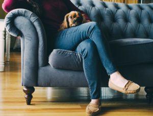 Gute Polstermöbel bieten einen hohen Sitzkomfort.
