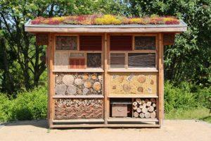 Wildtiere schützen: Insektenhotels im Garten aufstellen