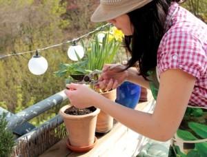 Frau Gartenarbeit